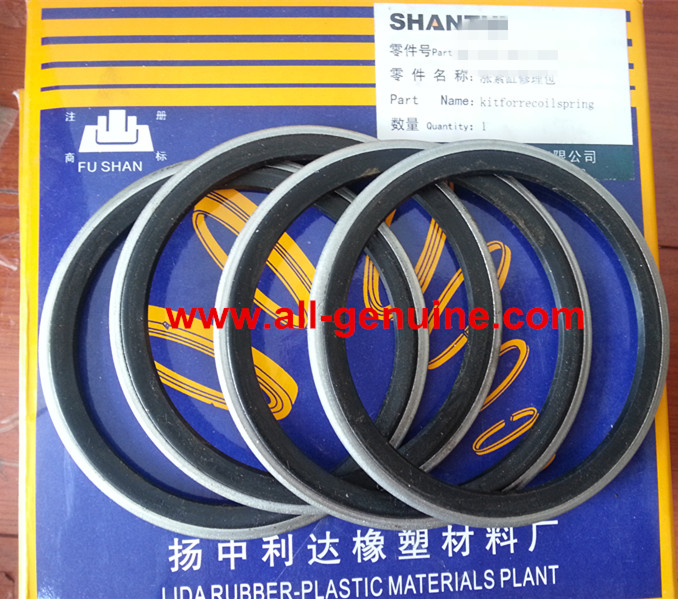 SHANTUI SD22 Seal Ring 07145-00075