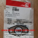 TEREX NHL TR50 TR60 RIGID DUMP TRUCK CUMMINS ENGINE 4973532 GASKET